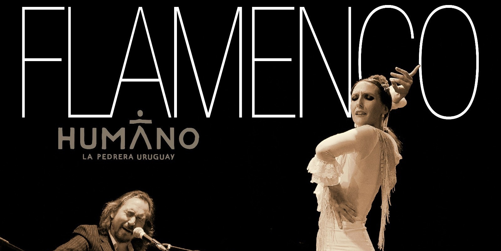 Flamenco imperdible de camino a Punta del Diablo!
